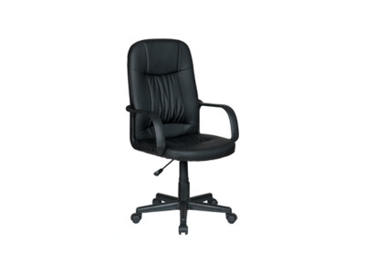 Ergo Office Chair
